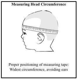 Diagram of how to measure your child's head